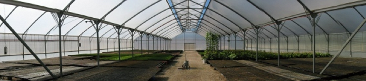 Greenhouses of Tasmania